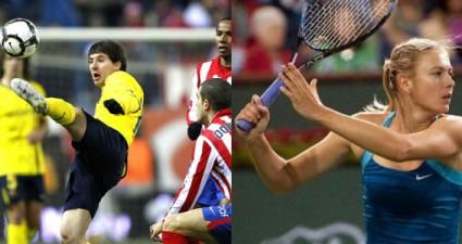 какой вид спорта в ставках на спорт лучше